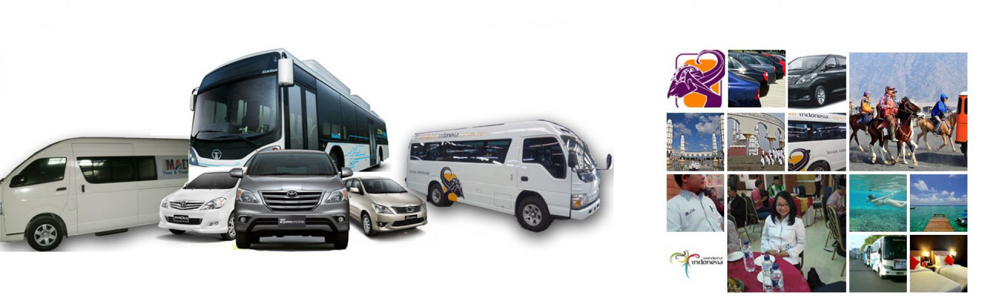Tour & Transport